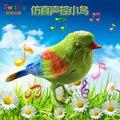 Chegada nova 1 PC O pássaro cantando voz-compacto gadgets engraçado brinquedos do pássaro do canto plástico simulação pássaro Presente de Aniversário