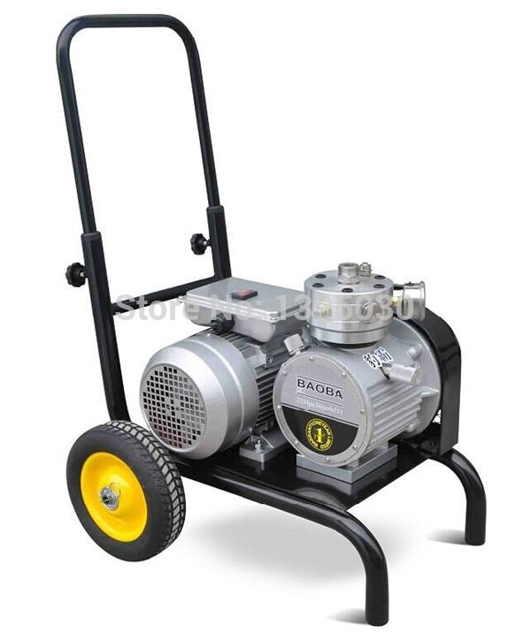 1vnt 220 / 110V elektrinis beoris dažų purkštuvas ST-995