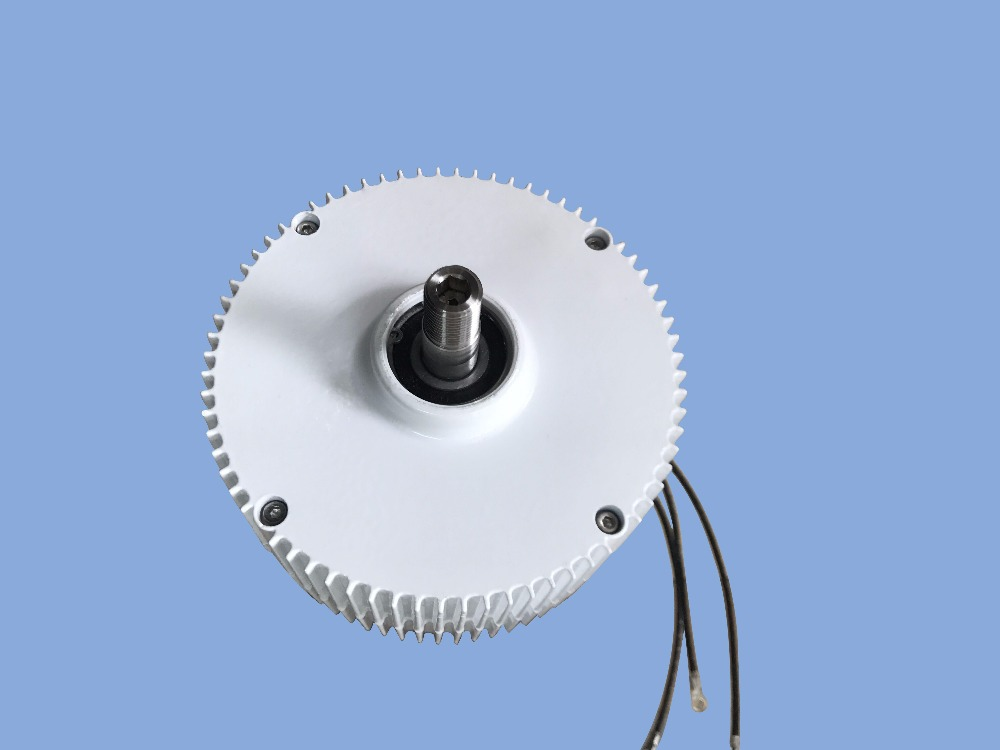 Multi-purpose permanent magnet generator 300w 12/24v with low rpm