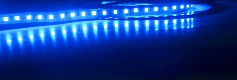 Ultra Bright SMD 2835 LED Strip DC 12V Flexible Waterproof Led Strip High Lumen LED Light Tape Ribbon Lamp 5MRoll 3528 5050 SMD Indoor 09