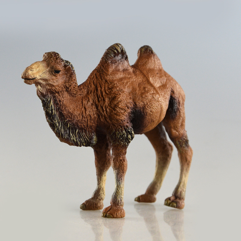 ZAPUYO Brand Starz Wild Animals Toys Camel Action Figures Static PVC Model Early Education Toys for Collection and Kids Gifts starz appaloosa horse model pvc action figures animals world collection toys gift for kids