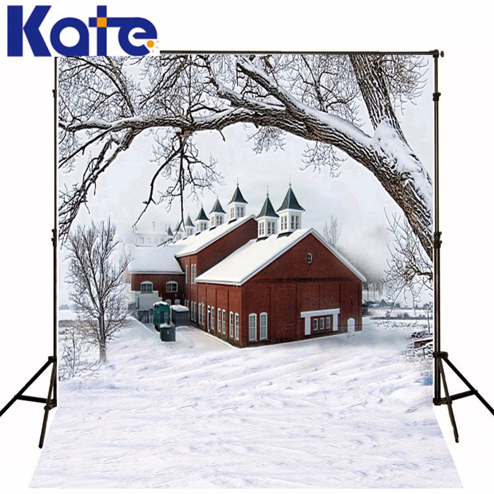600Cm*300Cm Fundo Snow Houses Branches3D Baby Photography Backdrop Background Lk 1880 600cm 300cm fundo clock roof balloon3d baby photography backdrop background lk 1982