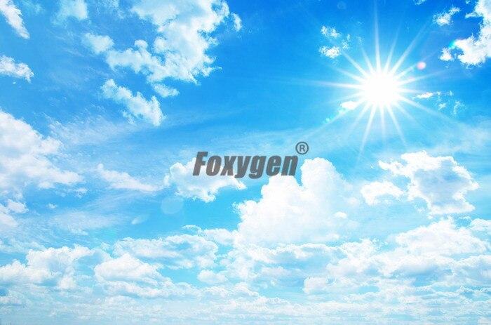 2017 hot sale blue sky Roof ceiling design PVC stretch ceiling film design for ceiling sheet blue sky чаша северный олень