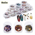 BlueZoo 12 botellas/set Nail Art Glitter Formas Redondas Confetti Sequins 3D Pegatinas Extremidades de Acrílico UV Gel Decoración de Uñas Accesseries
