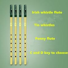 Irish Whistle Flauta Feadog C D llave Tin Whistle irlandés Penny silbato 6 hoyos clarinete Flauta niquelado Flauta Musical instrumento
