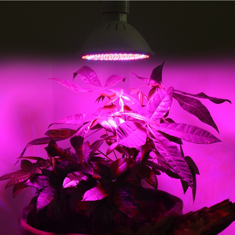 Levou Crescer Luzes crescimento de mudas Tipo de Item : Luzes para Crescimento