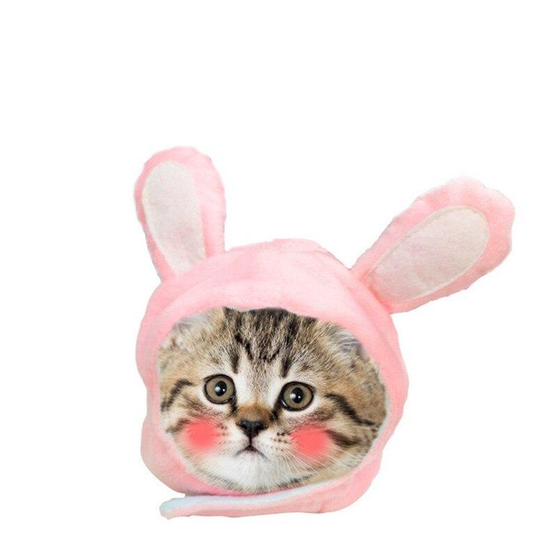 Cute animal modeling hat Pet hat dog teddy rabbit ear set Teddy cat hat cap GP170901-03