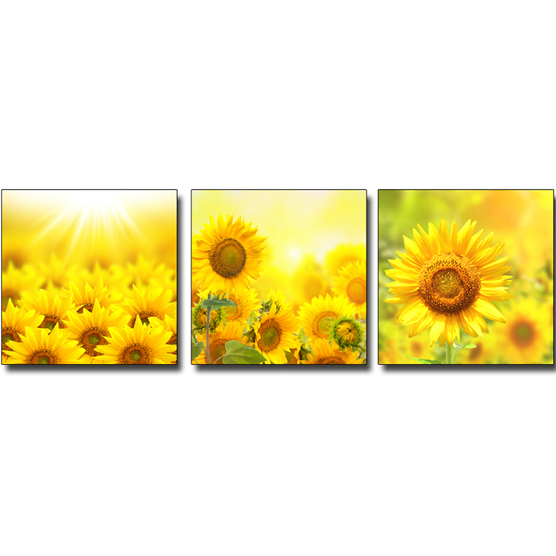 Morden Home Decor Abstract Canvas Painting sunflower flowers ...