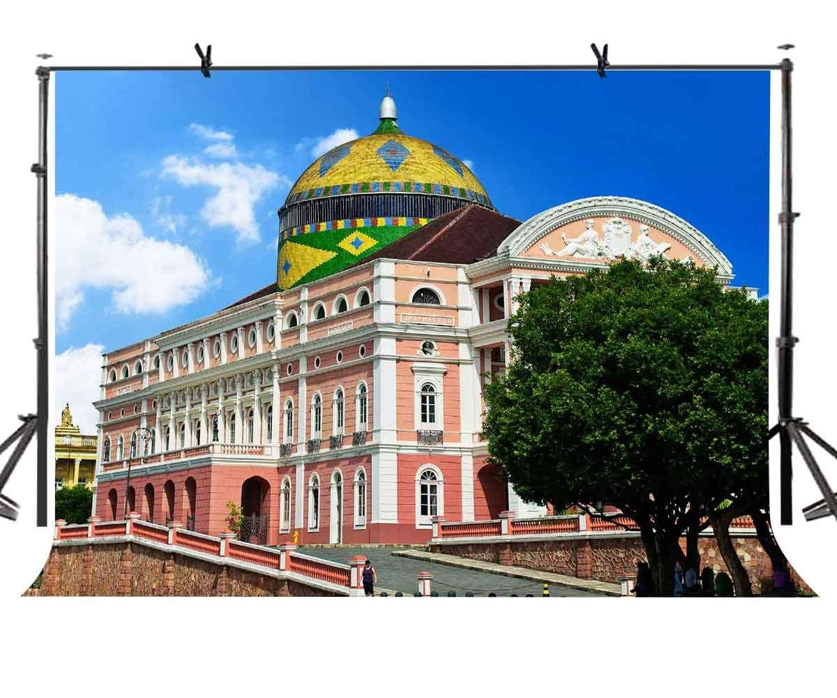 150x220cm Famous Buildings Backdrop Architectural Brazil Empire State Building Photography BackgroundPhoto Screen