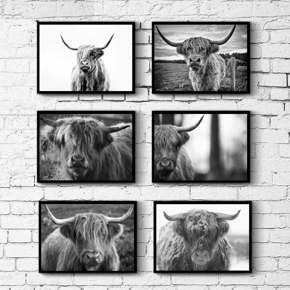 Highland Cow Farm Animal Highland Bull Wall Art Paint Wall Decor Canvas Prints Canvas Art Poster Oil Paintings No Frame Painting Calligraphy Aliexpress