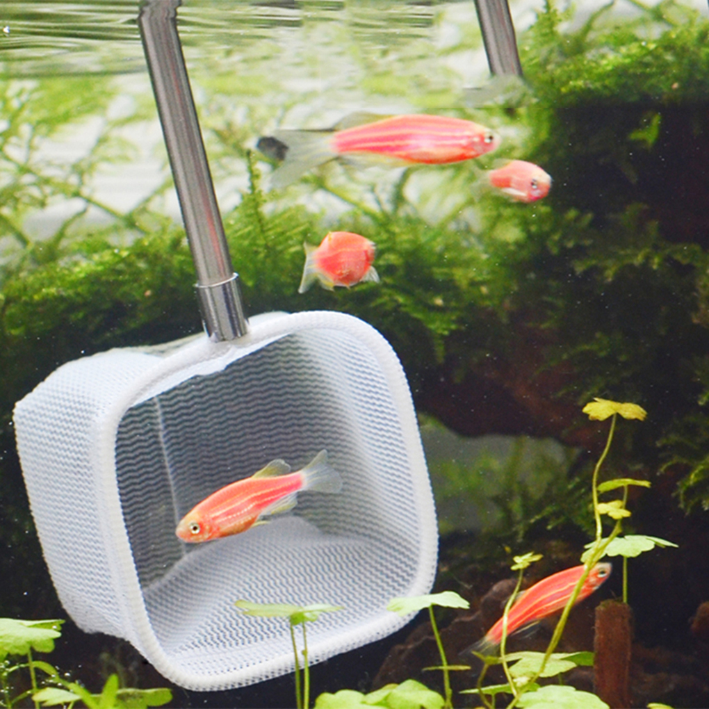 Retractable 3D Aquarium Stainless Steel Fishnet Pocket Shrimp Catching Net Cleaning Net Color Sent Randomly