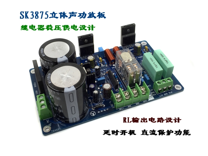 SK3875 Stereo Power Amplifier with Speaker Protection (finished) lm4766 power amplifier board with horn protection finished