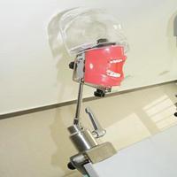 Зубные обучающий манекен Phantom голову скамьи горы зубные тренажеров гигиены симулятор стоматологии образование манекена Стоматологическая