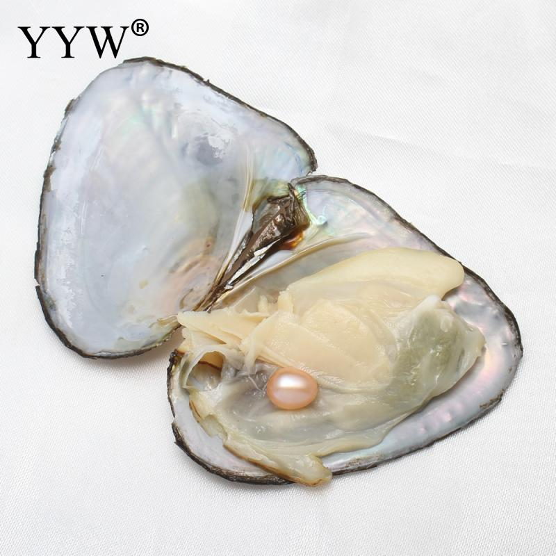 YYW 4PCs/Lot Mixed Pink White Black Purple Rice Pearl Beads Vacuum-packed Mussel Shell Freshwater Love Wish Pearls Oysters Gifts