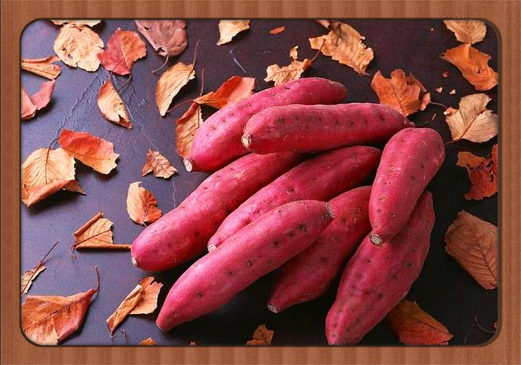 2017 hot sale Factory sale fresh font b food b font Leguminosae sweet potato seeds 100pcs
