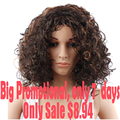 Promotions Kinky Curly Synthetic Wig Women's Wigs From Natural Hair Wigs For Black Women African American Cheap Sale