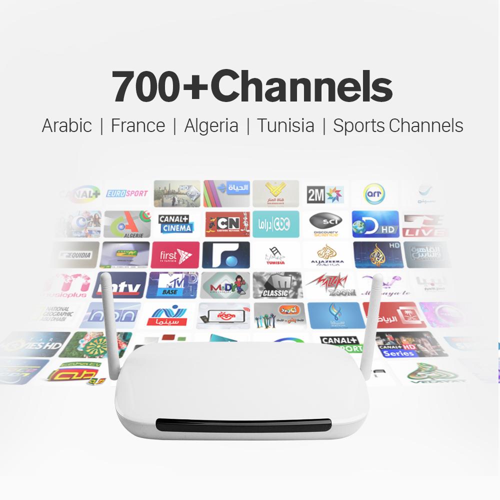 Prix pour Meilleur Arabe Français Italie IPTV Boîte 700 Plus Livraison Leadtv IPTV canaux Europe Espagne Allemagne Tunisie Intelligent Android TV Set Top Box