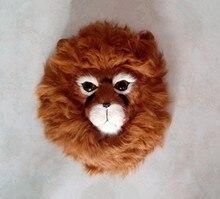Simulation lion's head  polyethylene&furs lion's head model funny gift about 24*20CM