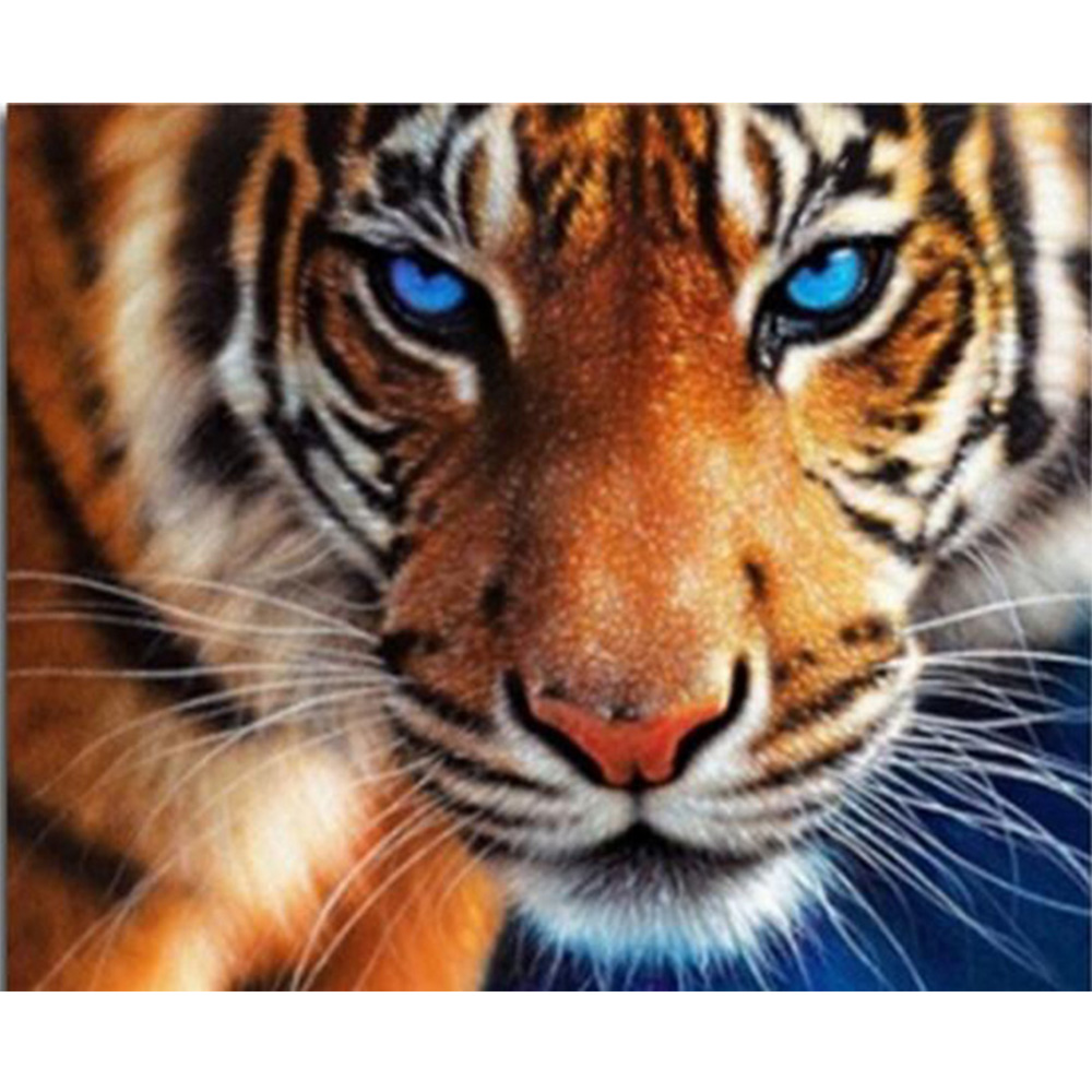 Craft 5D diamantový malířský tygr pryskyřice mozaika diy diamond malba celý obraz vrták diamantová šití výšivka zvíře K09