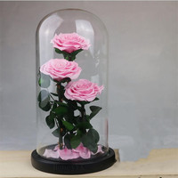 Pink Rose Eternal Flowers Dried Flowers Preserved Fresh Live Rose Enchanted Glass Dome Gift Box