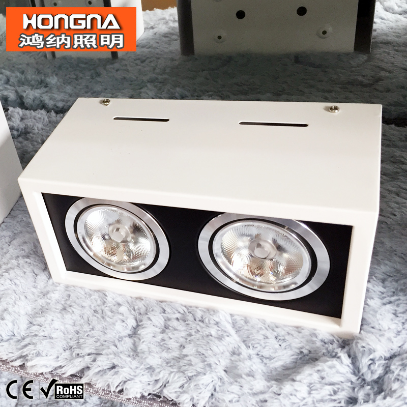 10 W * 2 LED Spot 2-head COB downlight 220 V Surface Monté Downlight Livraison Gratuite