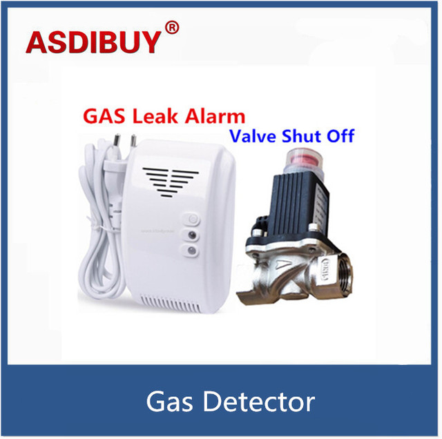 Standalone LPG Natural Gas Detector with Automatic Valve DN15 to Shut Off Pipe for Home Security