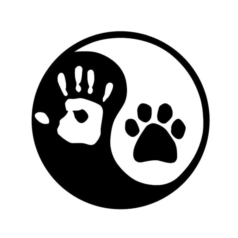 Cat Dog China Door
