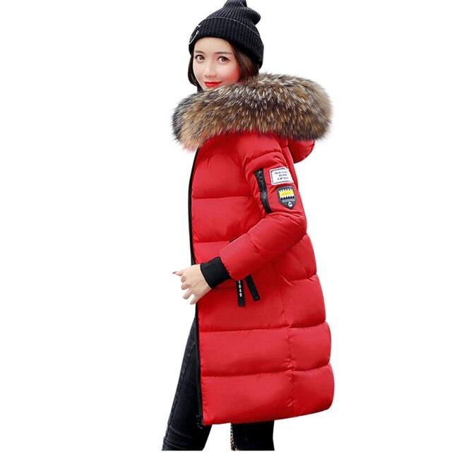 US $49.95 49% OFF|Echt Waschbär Pelz Winter Jacke Frauen 2019 Mode Winter Mantel Frauen Mit Kapuze Unten Jacke Frauen Lange Parkas Warme Weibliche