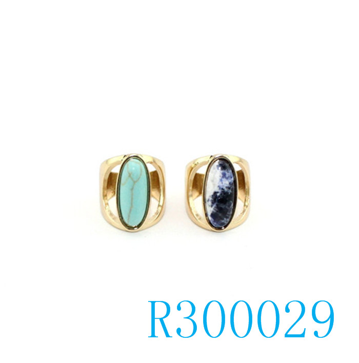 R300029