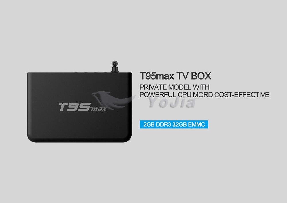 T95max (1)