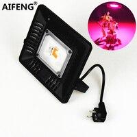 AIFENG Cob 50W Led Grow Light Full Spectrum EU Plug 220V Waterproof Led Grow Floodlight Lamps