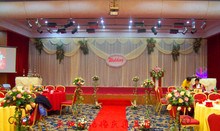 Wedding supply 10ft*20ft wedding backdrops for wedding decoration, wedding favor, 3m*6m backdrop