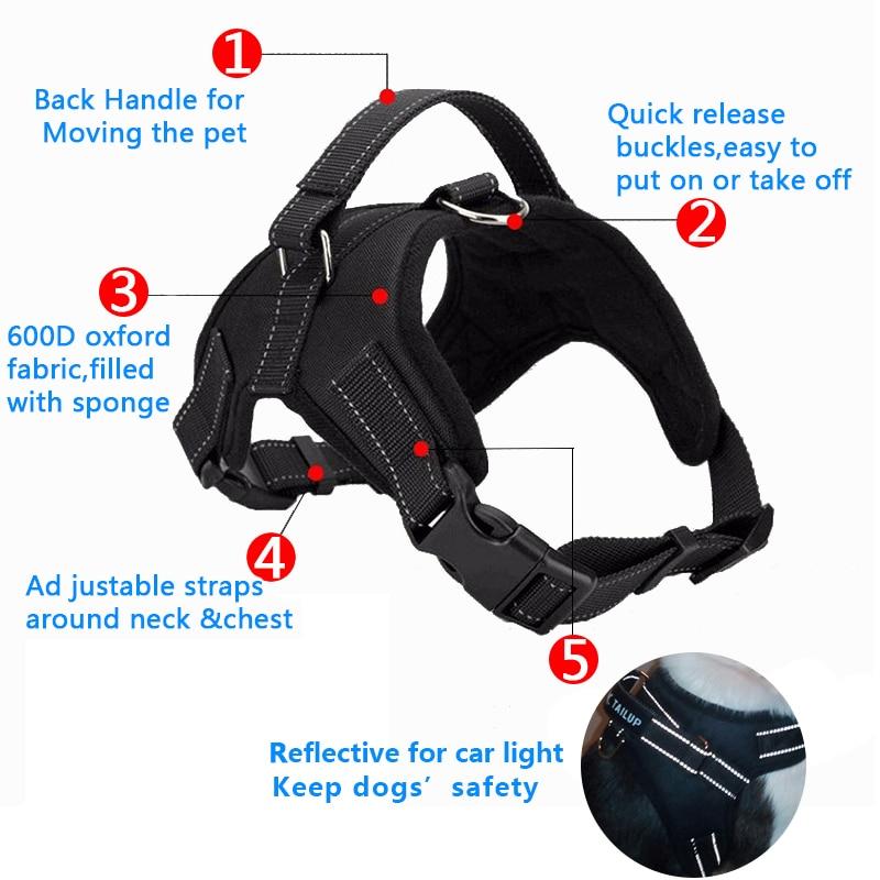 harness (2)