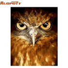 RUOPOTY diy frame Owl Animals Diy Oil Painting By Numbers Kits Acrylic Paint On Canvas Coloring By Numbers For Home Decor