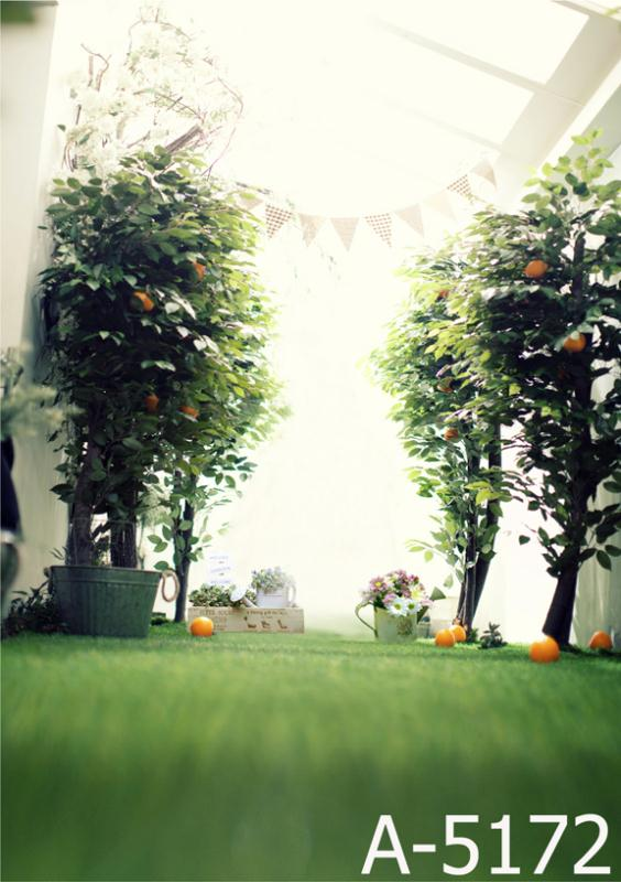 LIFE MAGIC BOX Background Fondo Para Fotografias Greenhouse Organic Trees Orange Trees Mh15-172