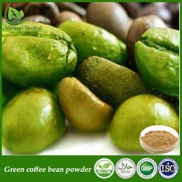 Best Chlorogenic Acid Price 10 Powder Green Coffee Bean Extract