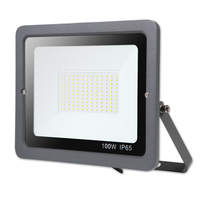 100W 220V spotlight outdoor Led Exterieur Lamps Lighting Garden Led Light Led Floodlight Square Light focos led reflector l
