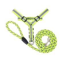 Free ShippingDog Traction Rope Blue Black All Seasons  Breakaway Nylon Small Dog Collar Leather Set Pet Supplies QY002
