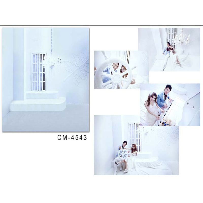 Wedding Photography Background Window Chandelier Photo Booth Backdrops Valentine's Day White Ground Backgrounds for Photo Studio