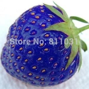 Hot selling 100pcs/bag blue strawberry rare fruit vegetable seed bonsai plant home garden free shipping