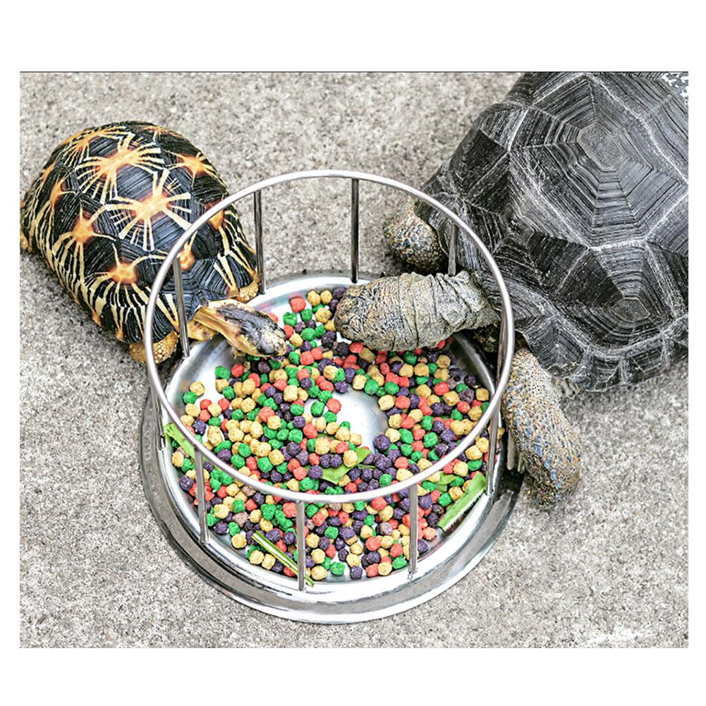 HiMISS Steel Pet Tortoise Food Bowl Turtle Water Food Tray Food Dispenser Feeding Tool