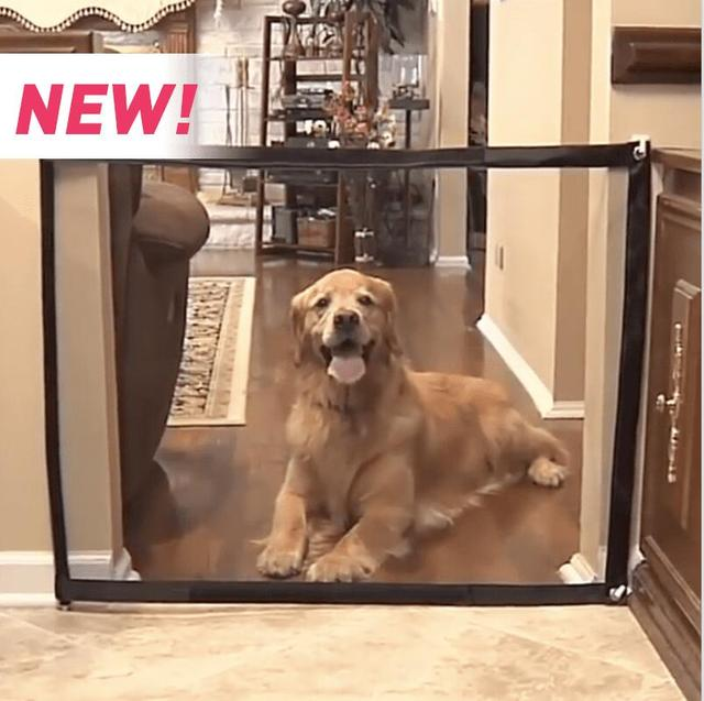Magic Gate For Pets