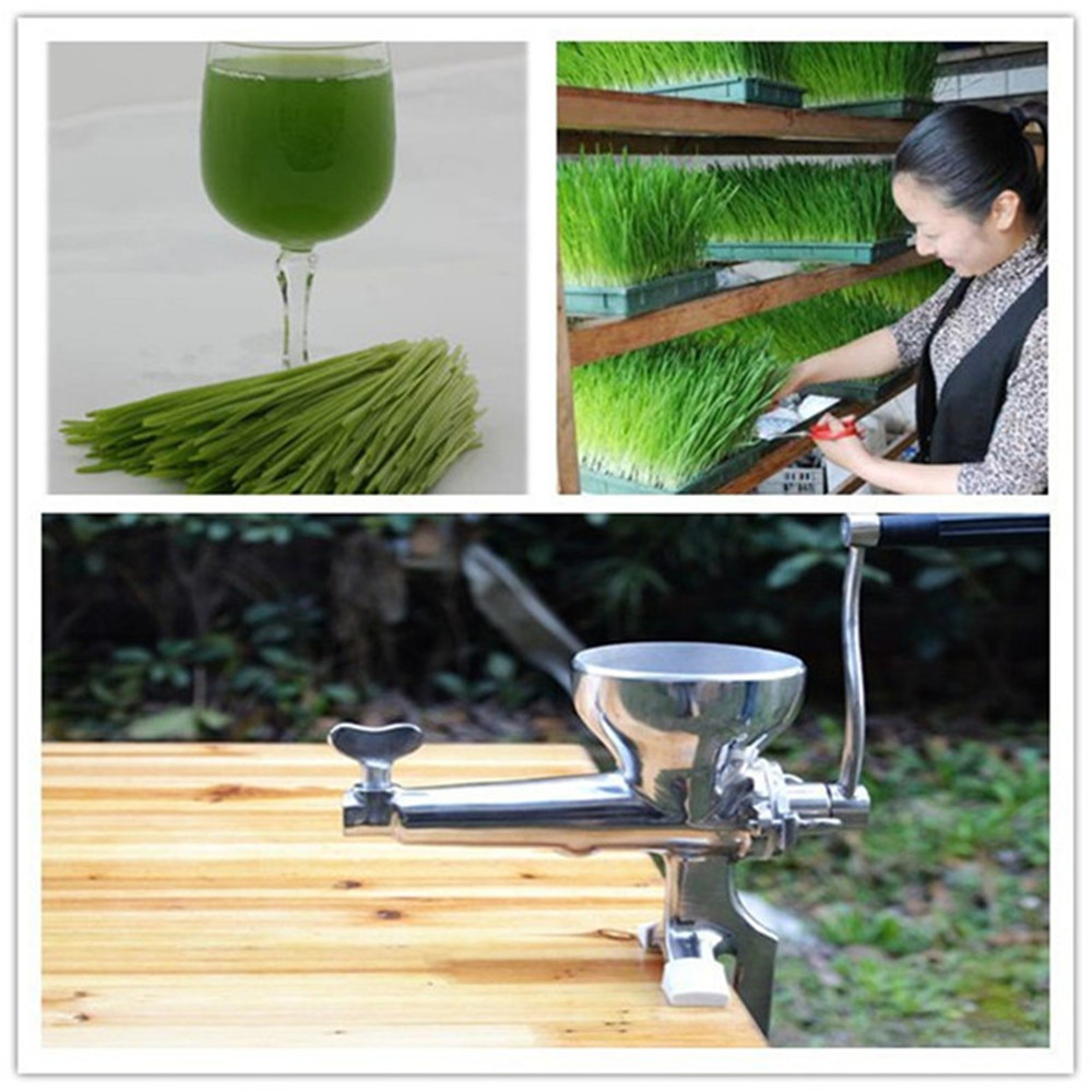 Stainless steel hand wheatgrass juicer machine manual auger slow juice ideal for fruit vegetable orange juice extractor glantop 2l smoothie blender fruit juice mixer juicer high performance pro commercial glthsg2029