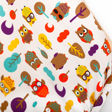 Owl Print Tent for Dogs