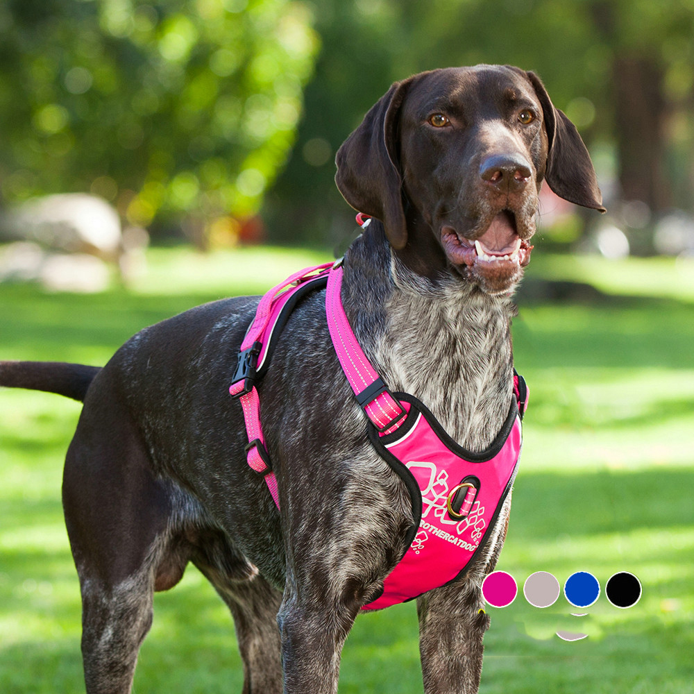 Sturdy Durable Large Pet Dog Harness Vest Backpack Professional Outdoor Walking With Handle For Big Animals Labrador Retriever
