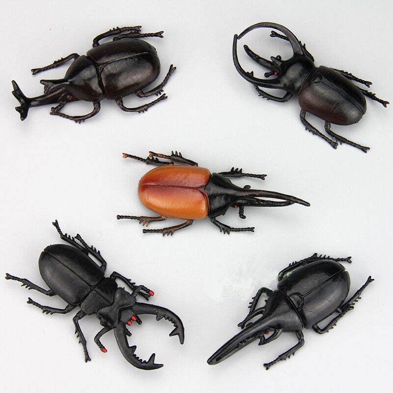 Bug Toys For Boys : Beetle plastic insect model boy s toy hy in
