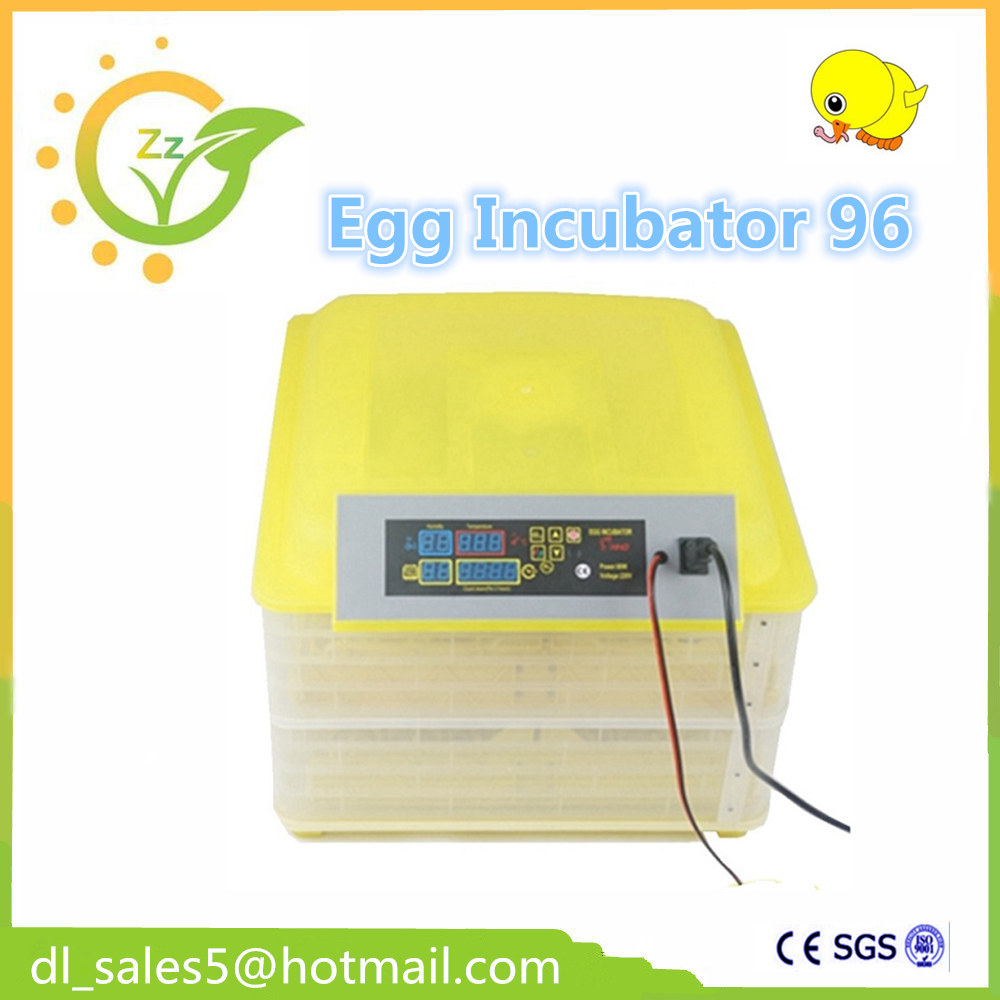 Chickens Eggs Incubator Automatic equipment Digital Egg Incubator Hatcher Bird Automatically Turn pammy riggs keeping chickens for dummies
