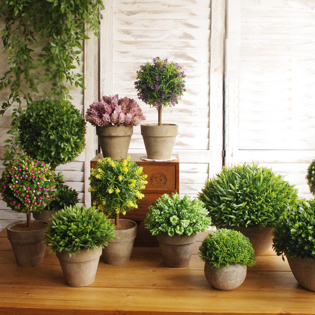 Fresh Indoor Plants Decoration Ideas For Interior Home: House Plants Interior Decoration