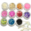 New 2017 11 Colors Shell Crushed Broken Tips 3d Nail Art Glitter Decorations DIY Craft Manicure Paillettes Beauty Salon BK01-11