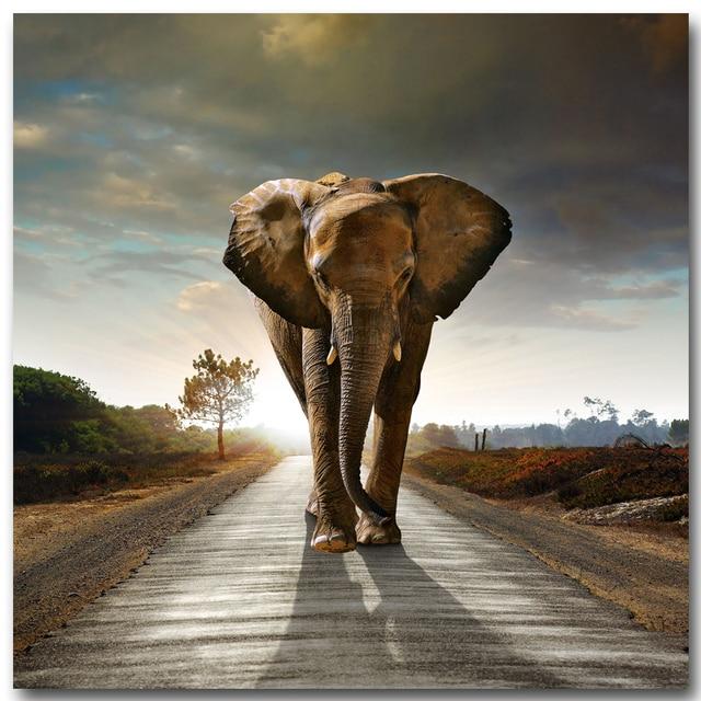 2017 toile peinture photos haute qualit hd pas cher prix grand art africain lphant photos modulaire - Cadre Elephant